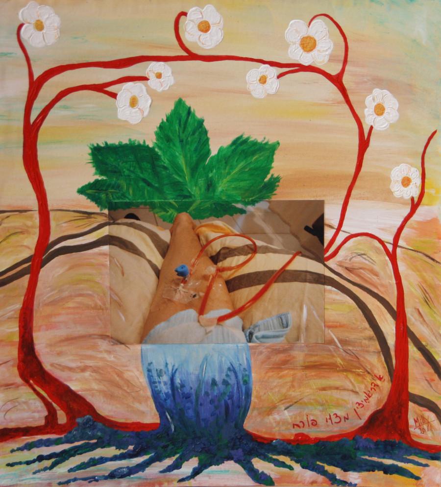 ציור 7