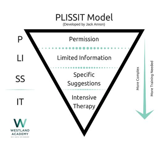 מודל PLISSIT