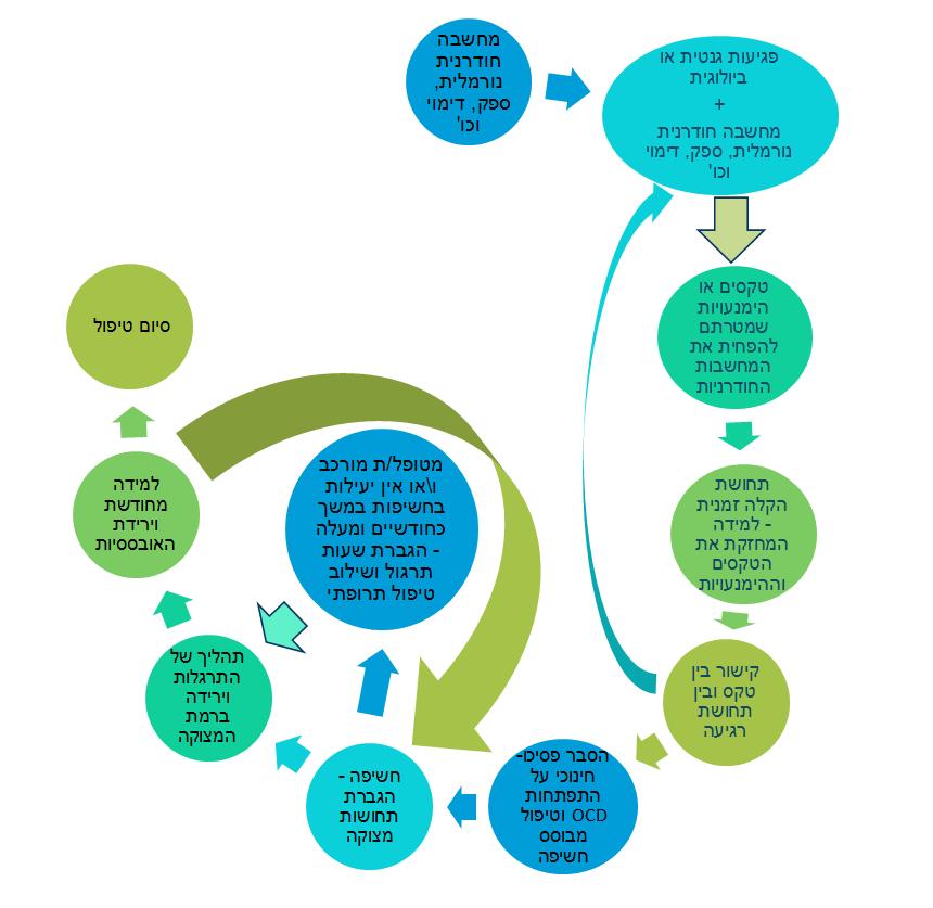 תרשים המתאר את מהלך התפתחות הפרעה אובססיבית קומפולסיבית