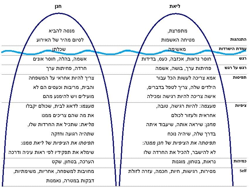 מודל הקרחון של ליאת וחנן