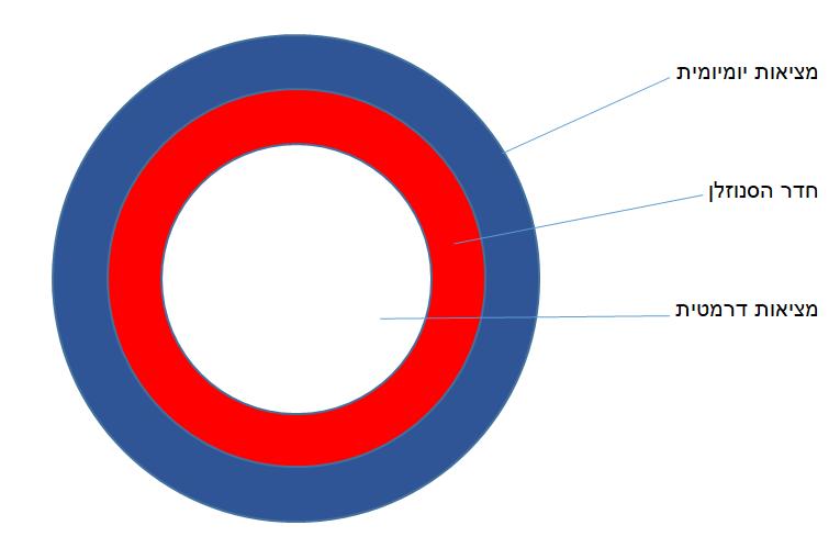 דרמה תרפיה בחדר הסנוזלן יוצרת שלושה עיגולים: העיגול הראשון מייצג את המציאות היומיומית, בתוכו עיגול שני המייצג את חדר הסנוזלן כמווסת ומכיל, ולבסוף עיגול שלישי המייצג את המציאות הדרמטית.